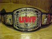 UWF Champion