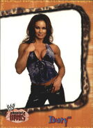 2002 WWE Absolute Divas (Fleer) Ivory 3
