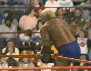 February 13, 1988 WWF Superstars of Wrestling.00007