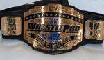 WrestlePro Championship