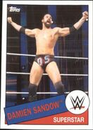 2015 WWE Heritage Wrestling Cards (Topps) Damien Sandow 69