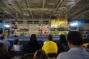 8-1-14 NXT 6