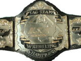 USWA Tag Team Championship