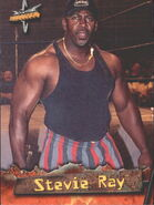 1999 WCW Embossed (Topps) Stevie Ray 25