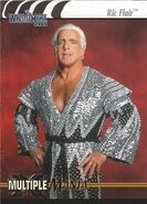 2003 WWE WrestleMania XIX (Fleer) Ric Flair 88