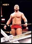 2017 WWE Wrestling Cards (Topps) Dash Wilder 67