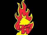 D2W Pro Wrestling