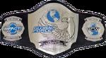GFW World Tag Team Championship Belt