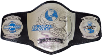 GFW World Tag Team Championship Belt