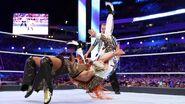 WrestleMania 33.126