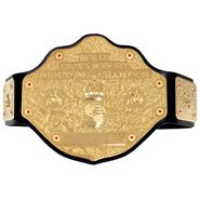 WCW World Championship Replica Title Belt