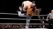 WrestleMania Revenge Tour 2013 - Paris.2