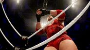 WrestleMania Revenge Tour 2013 - Lodz.21