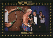 1991 WCW Collectible Trading Cards (Championship Marketing) Celebration 83
