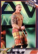 2013 TNA Impact Glory Wrestling Cards (Tristar) Sam Shaw 85