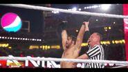 Best of WrestleMania Theater.00038