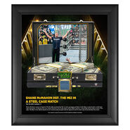 Shane McMahon Money in The Bank 15 x 17 Frame w Ring Canvas