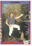 1995 WWF Wrestling Trading Cards (Merlin) Tatanka 91