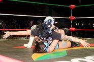 CMLL Martes Arena Mexico 11-14-17 6