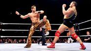 WWE WrestleMania Revenge Tour 2014 - Rotterdam.12