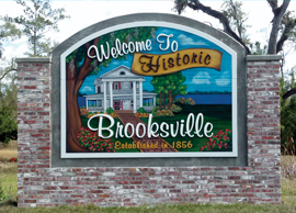 Image result for brooksville florida
