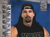 2002 WWF All Access (Fleer) Bradshaw (No.17)