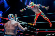 CMLL Martes Arena Mexico (September 24, 2019) 15