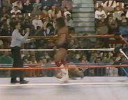 February 20, 1988 WWF Superstars of Wrestling.00018