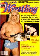 Inside Wrestling Flair