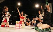 January 17, 2015 Ice Ribbon 6