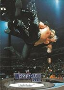2003 WWE WrestleMania XIX (Fleer) Undertaker 59