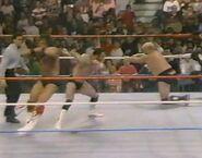 February 20, 1988 WWF Superstars of Wrestling.00019
