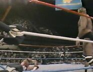 January 30, 1988 WWF Superstars of Wrestling.00013