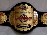 NWA Anarchy Heavyweight Championship