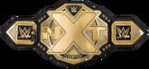 NXT Championship (2017)