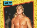 1991 WCW (Impel) Terry Taylor (No.68)