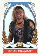 2008 WWE Heritage IV Trading Cards (Topps) Brian Pillman 76