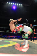 CMLL Domingos Arena Mexico (January 13, 2019) 4