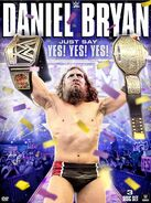 Just Say Yes! Yes! Yes Daniel Bryan