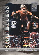 2002 WWF All Access (Fleer) Edge 34