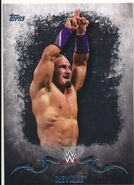 2016 Topps WWE Undisputed Wrestling Cards Neville 24