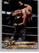 2018 WWE Wrestling Cards (Topps) Akam 3