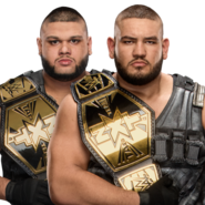 The Authors of Pain NXT Tag Team Champions 2017