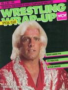 WCW Magazine - January 1991