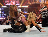 WrestleMania 22.53