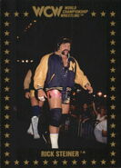 1991 WCW Collectible Trading Cards (Championship Marketing) Rick Steiner 26