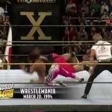 Legends Of Wrestlemania Network Show Pro Wrestling Fandom