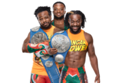 NewDay SD Tag Champions