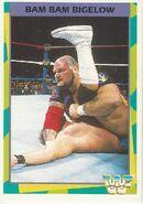 1995 WWF Wrestling Trading Cards (Merlin) Bam Bam Bigelow 177