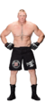 Brock Lesnar stat photo 2017